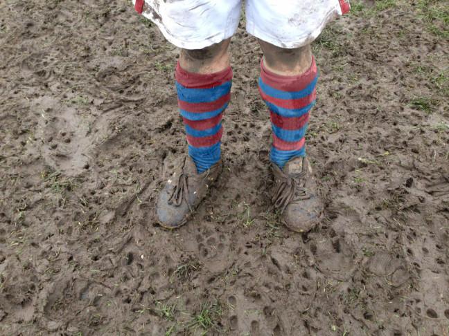 Mud socks claret